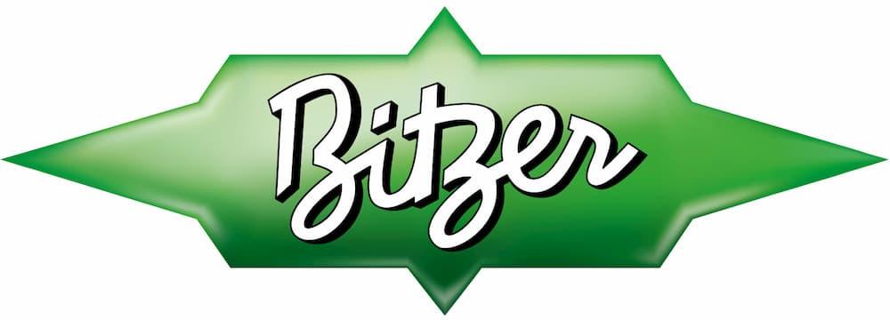 Bitzer Electronics job